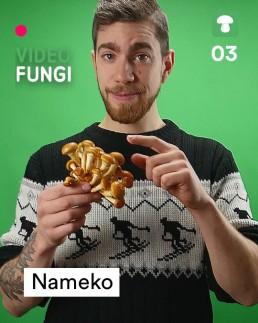 VideoFungi_3_Nameko